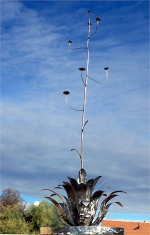 Agave In Stainless Steel