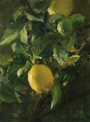 Lemons by Kyle Ma