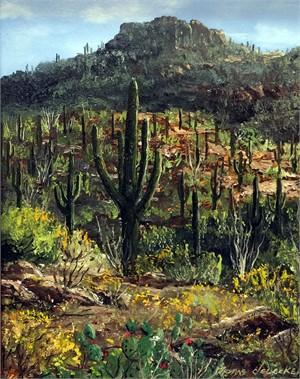 Saguaro - Between Tucson and Phoenix
