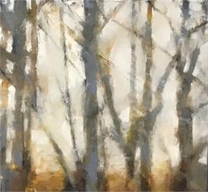 Woodlands, 2019