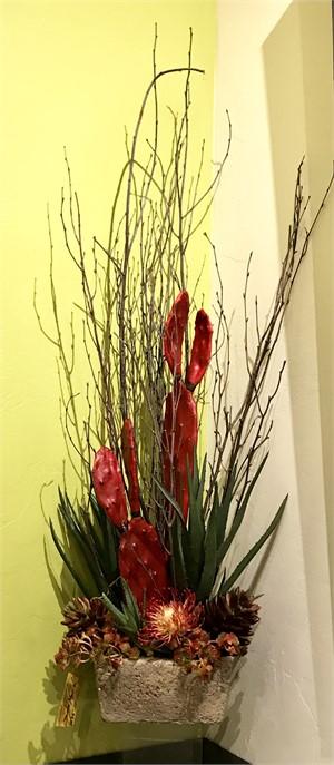 Santa Maria - Red Pear Cactus,Blue Agave, Protea,Sedum,Succulents #7, 2019