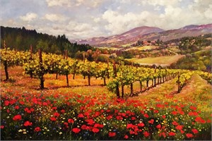 Poppies of Napa