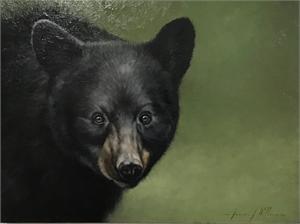 Bear , 2019