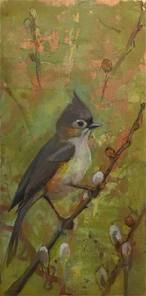 Tufted Titmouse by Sarah Kaiser