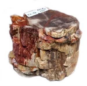 Petrified Wood Pedestal JO#32, 2019