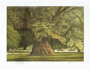 Great Tree, 1997