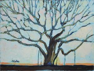 Leafless Tree, c. 1965