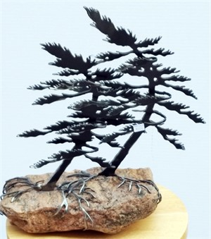Two Pines, 3107