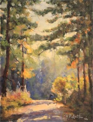 Nubbin Creek Road