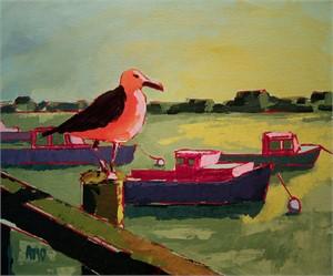 Orange gull