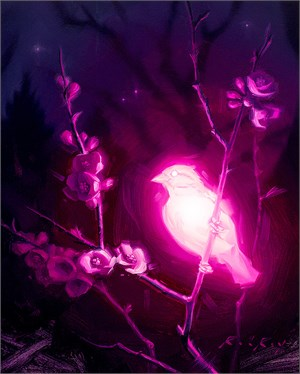 Bioluminescence - Compassion