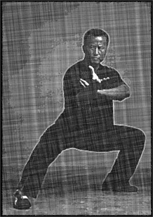 Master Ren (Commission)