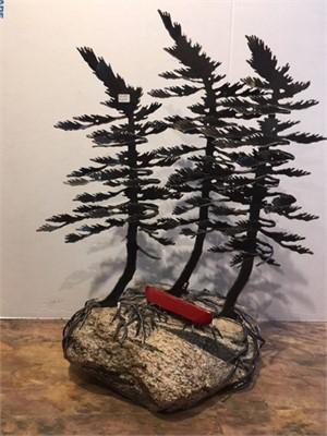 3 Tree Canoe 3591, 2019