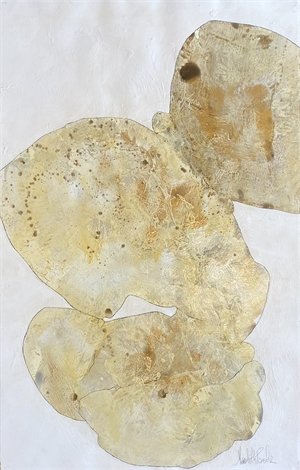 Fragments of Coral IV, 2017