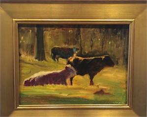 Cows in Sun