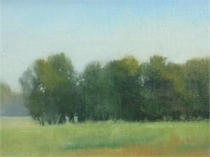 Treeline Field Study, 2018