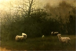 Sheep at Dusk