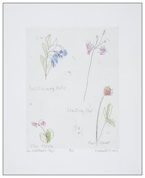 Our Wild Flowers: Page 1