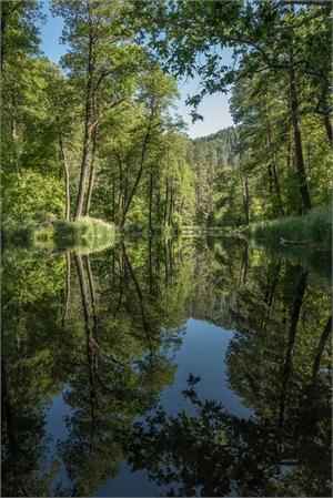 Oak Creek Reflections-AW