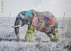 Tembo 4 (1/12), 2012