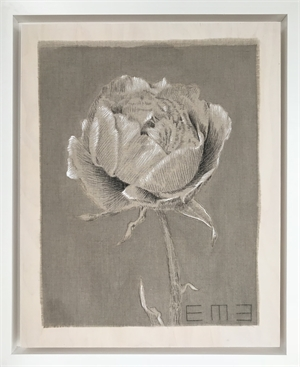 Antique Rose Study I by Emily Morgan Brown