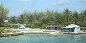 Bimini Island (0/950)
