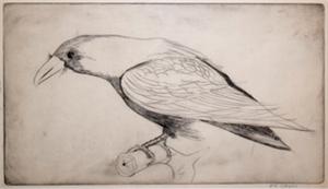 Crow, 1947