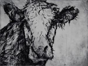 Cow, 2009