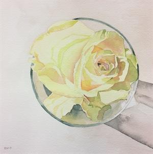 Rose in Glass
