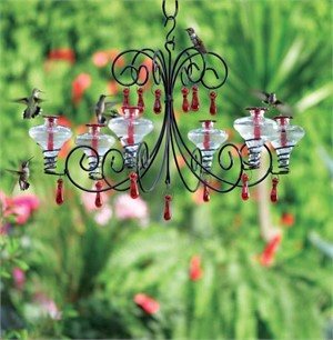 Hummingbird Feeder - 24oz Grand Chandelier in Clear