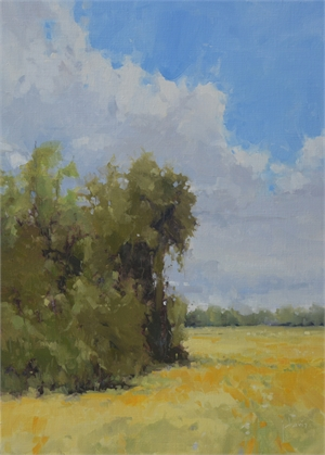 Approaching Rain by Julie Davis