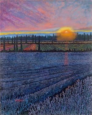Lavender Fields III