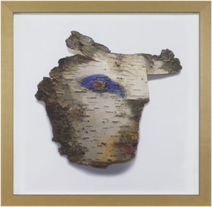 Up North Birch Bark Series:  Eagle Eye Cow Spirit, 2007