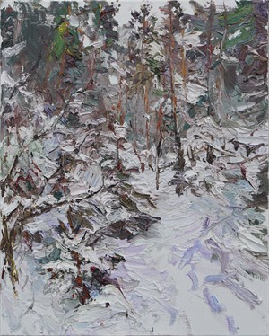 Heavy Snow, Karelia