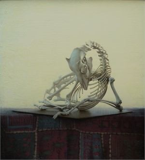 Goat Skeleton, 2009