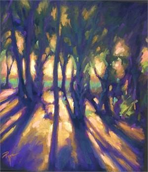 Light Spilling Through the Trees
