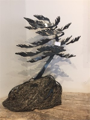 Windswept Pine, MA000706
