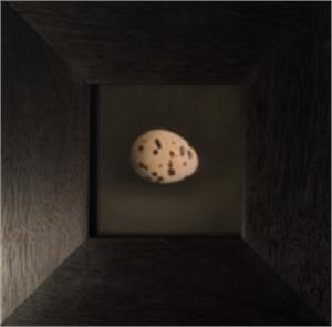 Quail Egg 33 (1/5), 2019