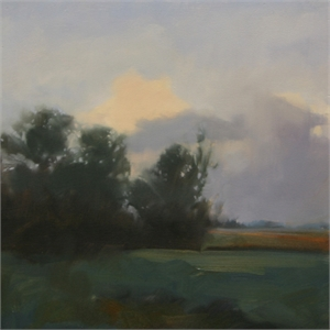Shady Fields Study