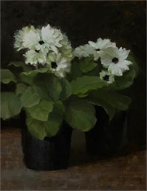 Gerber Dasies by Judith Pond Kudlow