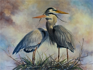 Great Blue Herons, 2019