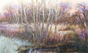 River Cottonwoods