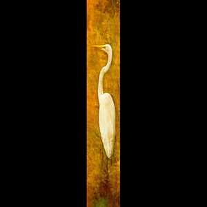 Solo Egret-Yellow w/Gold Frame
