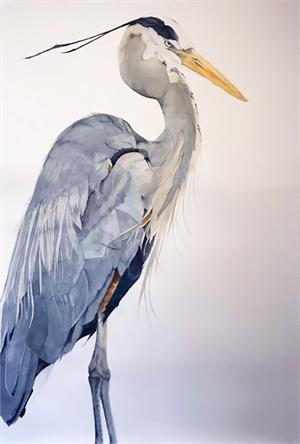 Blue Heron, 2019