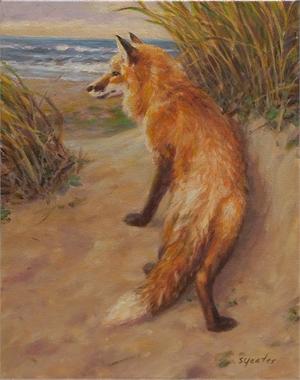 Fox on the Beach, Study II