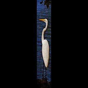 Solo Egret-Violet w/Gold Frame