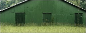 Green Warehouse, Hale County, AL, 2008