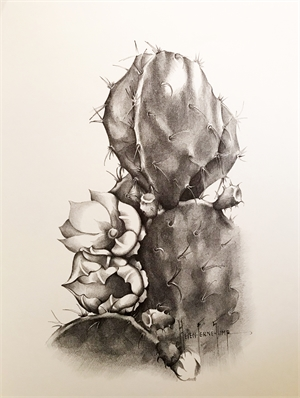 Untitled (Prickley Pear), c. 1935-40
