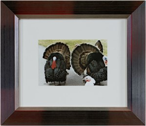 The Three Musketeers (Quadracci's Turkeys), 1997