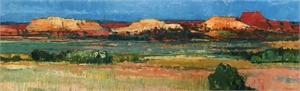 Red Mesa, 1988